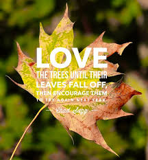 Flower And Love Quotes - best 20 quotes about autumn ideas on pinterest fall season