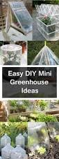 diy mini greenhouse ideas landscaping cape town professional