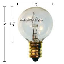 5 watt light bulbs 24v 5 watt sports arena game bulb pack 25 bulbs 219e24v5w