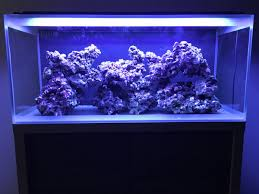 Fluval Sea Marine And Reef Led Strip Lights by Fluval M90 Build Reef2reef Saltwater And Reef Aquarium Forum