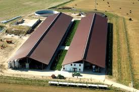 capannoni agricoli prefabbricati stalle agricolo strutture prefabbricate artigianato