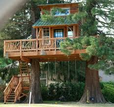85 best tree house images on