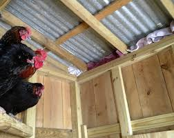 blocking drafts in the chicken coop just for winter murano