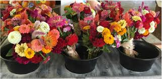 fresh cut flowers fresh cut flowers badding bros farm market and garden center