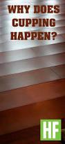Laminate Floor Peeling 68 Best Wood Floors Gone Wrong Images On Pinterest Wood Floor