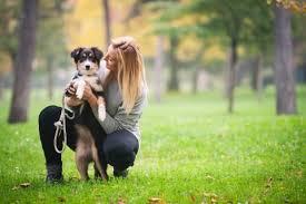 Pet Pet Sitting Jobs With Pawshake Pawshake