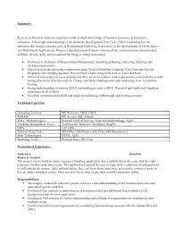 systems analyst resume doc business analyst sample resume u2013 foodcity me