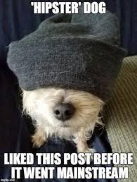 Hipster Dog Meme - hipster dog imgflip