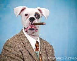 boxer dog umbrella gargle large original photograph of boxer dog and american