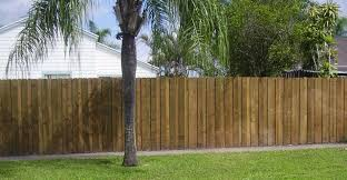 best tall privacy fence fence ideas tall privacy fence for plants