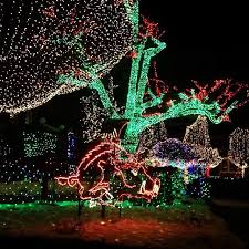 fayetteville square christmas lights visit the fayetteville square to see the awesome christmas lights
