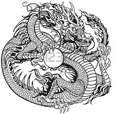 dragon stock photos u0026 pictures royalty free dragon images