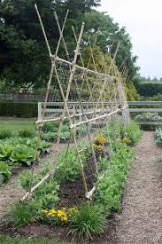 Arbors And Trellises Black Gold Classic Garden Trellising