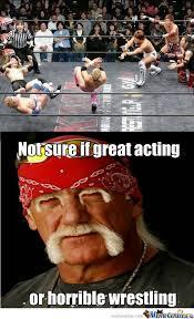 Pro Wrestling Memes - hulk hogan doubts your pro wrestling skills by daisukeagame