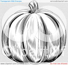 pumpkin no background clipart of a vintage woodcut styled pumpkin in black and white