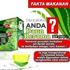 Teh Rerama 15g x 30 pcs teh rerama stevia butterfly tea reizaku rama rama rawat