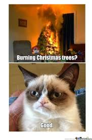 Grumpy Cat Memes Christmas - grumpy cat s christmas by meaghanw519 meme center
