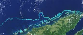 Coral Reef Map Of The World by Climate Change Vital Signs Of The Planet Keeping An Eye On Coral