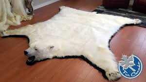 exquisite white bear skin rug with head most faux polar