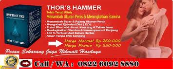 toko jual obat kuat hammer of thor asli murah di bandung jual obat