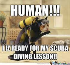 Scuba Meme - scuba cartoon scuba gear scubas and diving quotes
