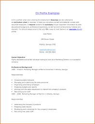 accounting resume objective statement examples professional profile resume examples free resume example and professional profile resume examples accounting resume samples