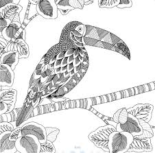 animal kingdom coloring book printable animal kingdom colouring