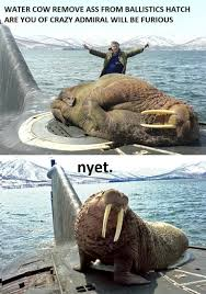 walrus vs russian sub