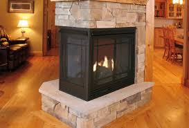 Propane Fireplace Heaters by Propane Fireplaces Living Room Traditional With Direct Vent