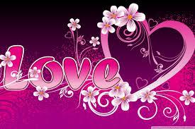 pink love hd desktop wallpaper widescreen high definition mobile
