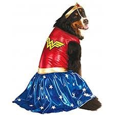 Wonder Woman Costume Amazon Com Rubie U0027s Big Dog Wonder Woman Dog Costume Pet Supplies