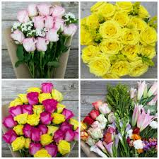 flowers free shipping s day flower deal 15 for 30 in flowers free shipping