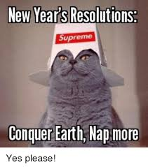 Yes Please Meme - ew years resolutions supreme conquer earth nap more yes please