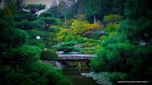 Botanical Gardens Seattle Seattle Japanese Garden Home
