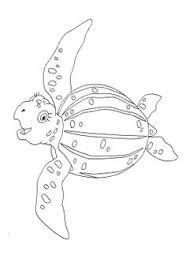 turtle woods coloring chris turtle