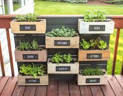 diy herb garden diy herb wall planter ruggy pinterest herbs garden herb