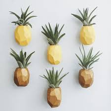 pineapple air plant magnet w air plant