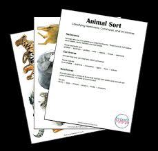 learn to classify animals herbivore carnivore or omnivore
