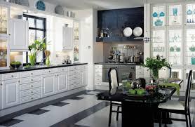 kitchen interesting kitchen design software metric memorable
