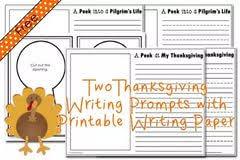 turkey persuasive essay