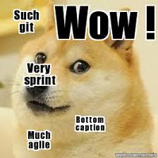 Agile Meme - doge wow such git very sprint bottom caption much agile
