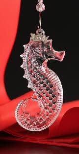 2762 best seahorses the sea images on