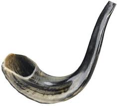 where to buy shofar classic shofar for sale shofar store buy blowing ram horns