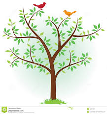 tree with birds royalty free stock photo image 20357625