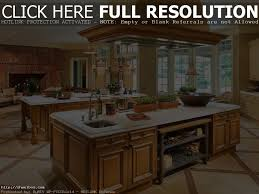 kitchen simple kitchen designs photo gallery cool kitchens model