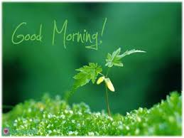 53 best morning sms images on morning quotes