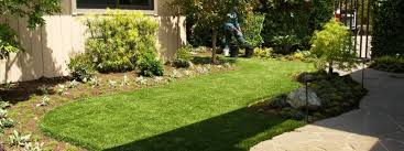 artificial turf u0026 sod in a backyard of bay area north california