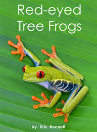 eyed tree frogs level h 14 rr books