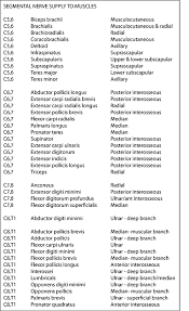 Innervation Of Infraspinatus Instant Anatomy Upper Limb Nerves Segmental Supply For Muscles