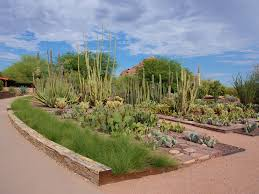 South Texas Botanical Gardens by Best Botanical Gardens In The Us Our Picks For The Best